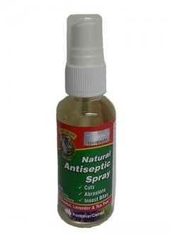 Euky Bear Antiseptic Spray - 55ml