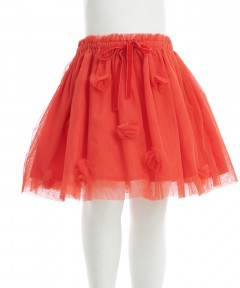 Gingersnaps Floral Appliques Tulle Skirt